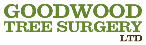 Goodwood Tree Surgery Ltd